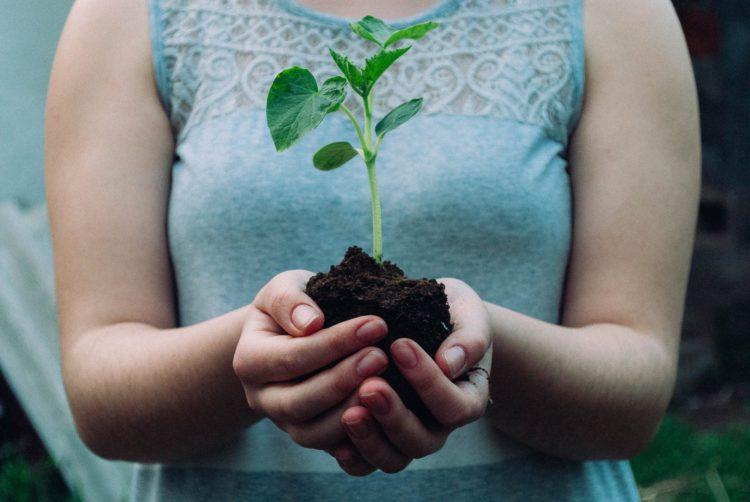 La maison d'hôte L'Autre Rives s'engage pour l'environnement